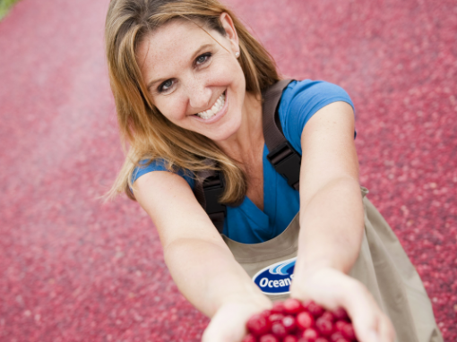 Kravitz-Mollor Cranberries