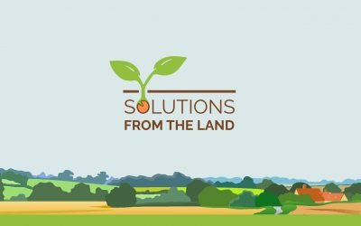 VoLo Foundation Awards SfL $100,000 Grant in Support of Florida Climate Smart Agriculture Initiative